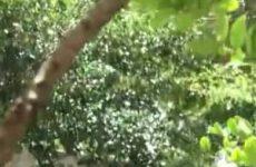 Een vluggertje op een parkeerplaats stiekem gefilmd